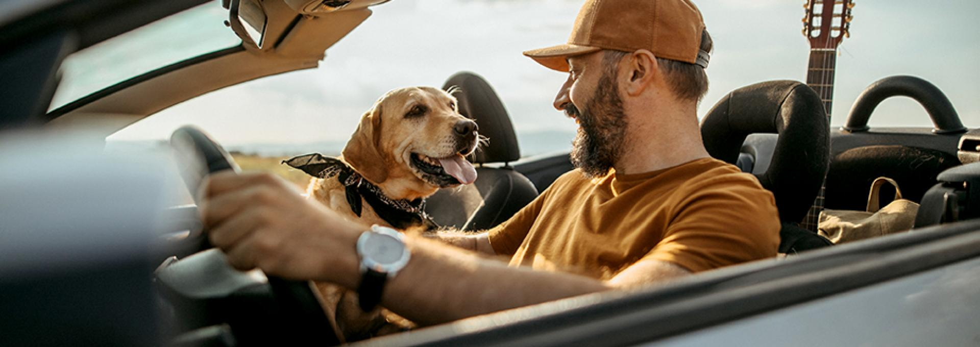 Man and dog in convertible